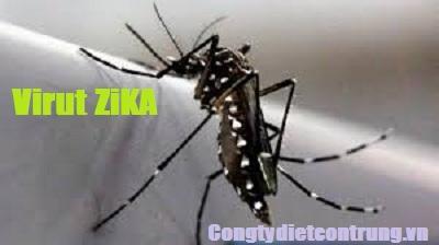 cong-ty-diet-muoi-phong-chong-virut-zika