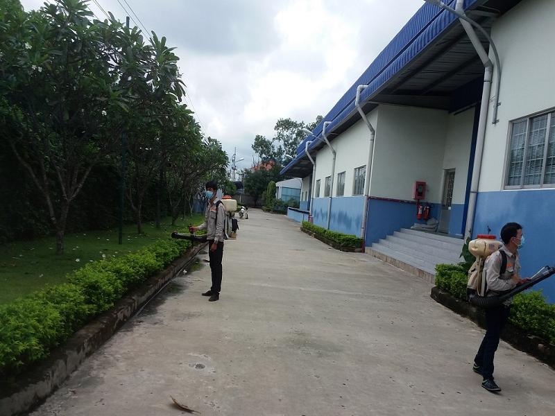 Công ty diệt côn trùng tại Đắk Nông