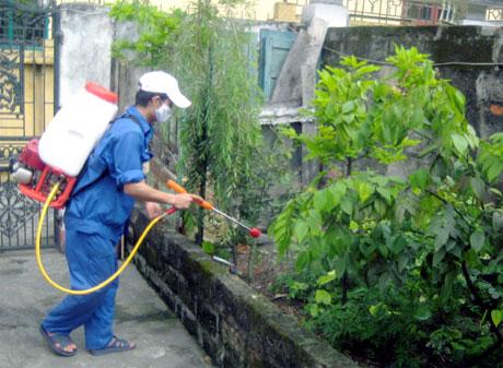 Công ty diệt côn trùng tại Bình Định