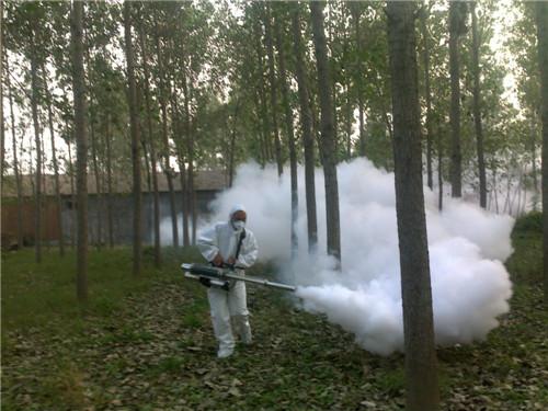 Công ty diệt côn trùng tại Ninh Bình