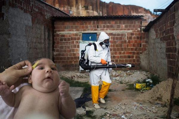 Công ty diệt côn trùng tại Tây Ninh
