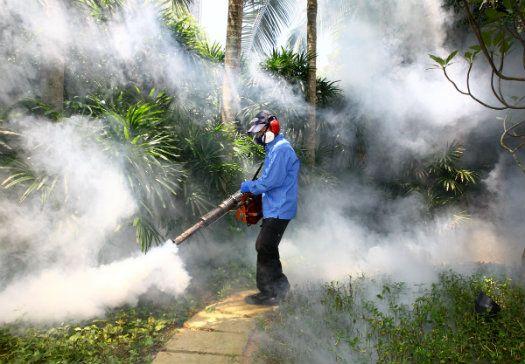 Công ty diệt côn trùng tại Lạng Sơn