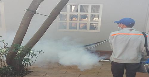 Công ty diệt côn trùng tại Lai Châu