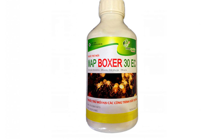 mapboxer-1300x1024