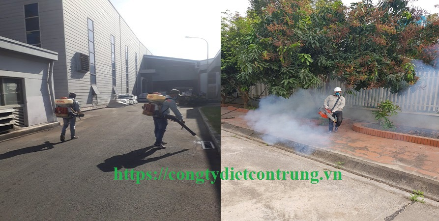Đơn vị diệt muỗi tại Đồng Nai
