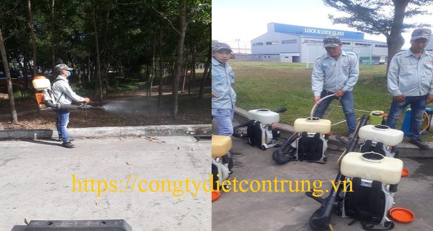 Công ty diệt kiến Hà Nam