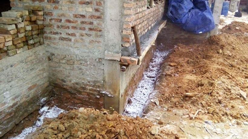phòng chống mối công trình tại Nam Định