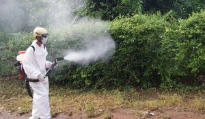 phun diệt muỗi tại Bắc Giang